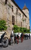 Episcopal Palace, Cordoba, Spain. Episcopal Palace with horses and carriages in the foreground, Cordoba, Cordoba Province, Andalusia, Spain, Western Europe Royalty Free Stock Photo