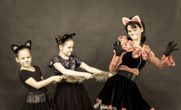 Episode of funny play in retro style. Three girls in cat costume Stock Photo
