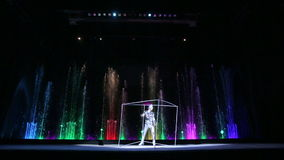 Episode of the Show in the Circus of Dancing