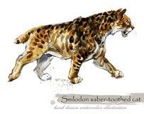 Epoki Lodowcowej przyroda prehistoryczne okres fauny Smilodon Saber uzębiony kot ilustracji