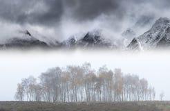 Epopeja krajobrazowy wizerunek w jesieni z mgłowymi drzewami przed draamtic halnym ridgeline w tle zdjęcie royalty free