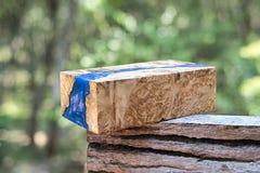epoxy kåda som stabiliserar bakgrund för exotiskt trä för Afzelia burl röd, bildfoto för abstrakt konst royaltyfria bilder
