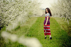 10 eps女孩例证春天向量 与花花圈的美好的模型在她的头 关闭浪漫肉欲的深色的夫人画象有蓝眼睛的和 免版税库存图片