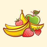 eps文件果子包括的向量 免版税库存图片