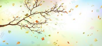 eps ανασκόπησης 8 φθινοπώρου συμπεριλαμβανόμενο αρχείο δέντρο Στοκ Φωτογραφία