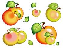 eps μήλων μοντέλο αρχείων Στοκ Εικόνα