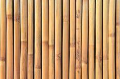 eps μπαμπού 10 ανασκόπησης διάνυσμα απεικόνισης Στοκ Φωτογραφία
