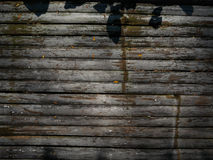eps μπαμπού 10 ανασκόπησης διάνυσμα απεικόνισης Στοκ Εικόνες