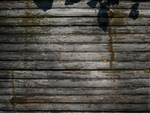 eps μπαμπού 10 ανασκόπησης διάνυσμα απεικόνισης Στοκ εικόνες με δικαίωμα ελεύθερης χρήσης