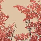 eps σχεδίου η μορφή λουλουδιών αρχείων περιλαμβάνει Στοκ Εικόνες