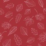 eps 8 φθινοπώρου το αρχείο περιέλαβε το διάνυσμα προτύπων φύλλων Στοκ Εικόνες