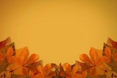 eps 8 φθινοπώρου το αρχείο περιέλαβε το διάνυσμα προτύπων φύλλων Στοκ Εικόνα