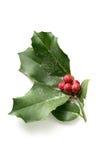 eps Χριστουγέννων 8 απεικόνιση ελαιόπρινου πέρα από το διανυσματικό λευκό Στοκ Εικόνα