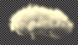 10 eps Туман или изолированный дымом прозрачный специальный эффект Белая предпосылка пасмурности, тумана или смога также вектор и Стоковое фото RF