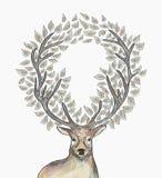Круг северного оленя рождества выходит состав EPS10 Стоковые Изображения