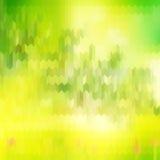 Πράσινα θολωμένα υπόβαθρο και φως του ήλιου 10 eps Στοκ Εικόνες