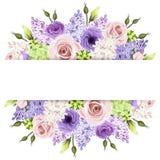 与桃红色,紫色和白玫瑰和淡紫色花的背景 向量EPS-10 免版税图库摄影