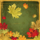 EPS10 Autumn leaves grunge background. Vector Stock Photos