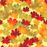 EPS10 Autumn leaves seamless background. Vector Royalty Free Stock Photography