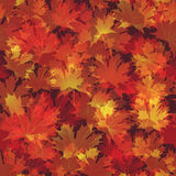 EPS10 Autumn leaves seamless background. Vector Stock Images