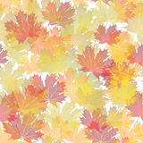 EPS10 Autumn leaves seamless background. Vector Royalty Free Stock Images