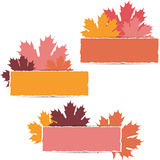 EPS10 Autumn maple leaves design. Vector Royalty Free Stock Image