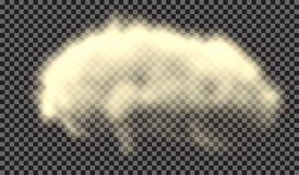 EPS 10. Fog or smoke isolated transparent special effect. White  cloudiness, mist or smog background. Vector illustration Royalty Free Stock Photo