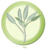 +EPS Salbei-Ikone Lizenzfreies Stockbild