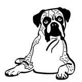 Eps van de bokserhond vectorillustratie door crafteroks royalty-vrije illustratie
