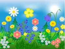 EPS10 vector illustration Bright wild flowers Royalty Free Stock Image