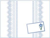 +EPS vergeet me niet de Doos van de Gift, het Kant van de Pastelkleur, de Markering van de Gift Stock Afbeeldingen