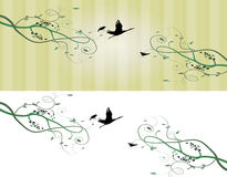 Eps10 vector background Royalty Free Stock Images