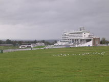 Epsom Racecourse Grandstand. The grandstand at Epsom, Surrey royalty free stock photos