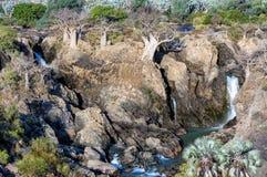 Epupa看法在纳米比亚和安哥拉的边界落 免版税库存照片