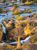 Epupa. Falls view, Namibia, Africa Stock Images