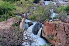 Epupa-Wasserfälle herein auf der Grenze von Angola und von Namibia Lizenzfreies Stockfoto