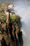 The Epupa waterfall, Namibia Royalty Free Stock Image