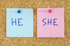 Equality. Blue and pink paper in a corkboard Royalty Free Stock Image