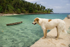 Equator Beach Stock Photo