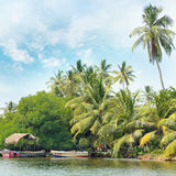 Equatorial forest and boats on lake Royalty Free Stock Image