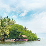 Equatorial forest and boats Stock Photography