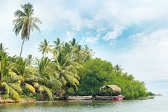 Equatorial forest and boats Royalty Free Stock Image