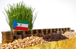 Equatorial Guinea flag waving with stack of money coins and piles of wheat Royalty Free Stock Photo