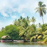 Equatoriale bos en boten op meer Royalty-vrije Stock Afbeelding
