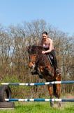 Equestre - salto do cavalo Fotografia de Stock
