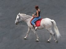Equestrian. Girl riding a white horse on the grey stony street Royalty Free Stock Image