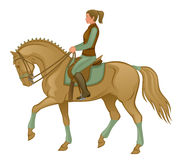 Equestrian. Girl riding on a horse on a white background Royalty Free Stock Images