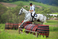 Equestrian fotografia stock