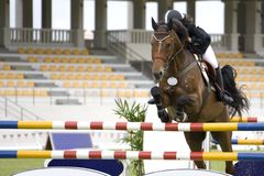 Equestrian. Image of an equestrian competitor in action Royalty Free Stock Photo