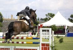 Equestrian. Image of an equestrian competitor in action Stock Photo